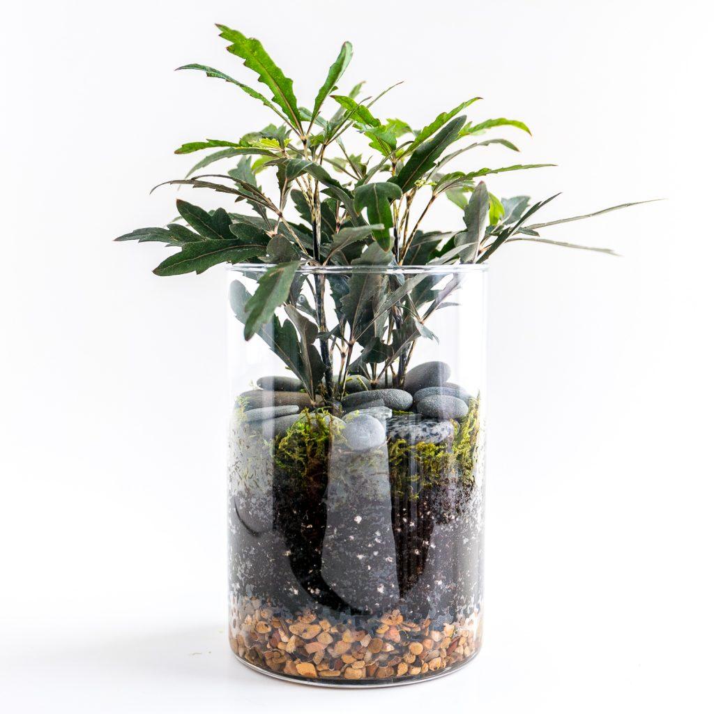 Travel and terrariums - another faux terrarium