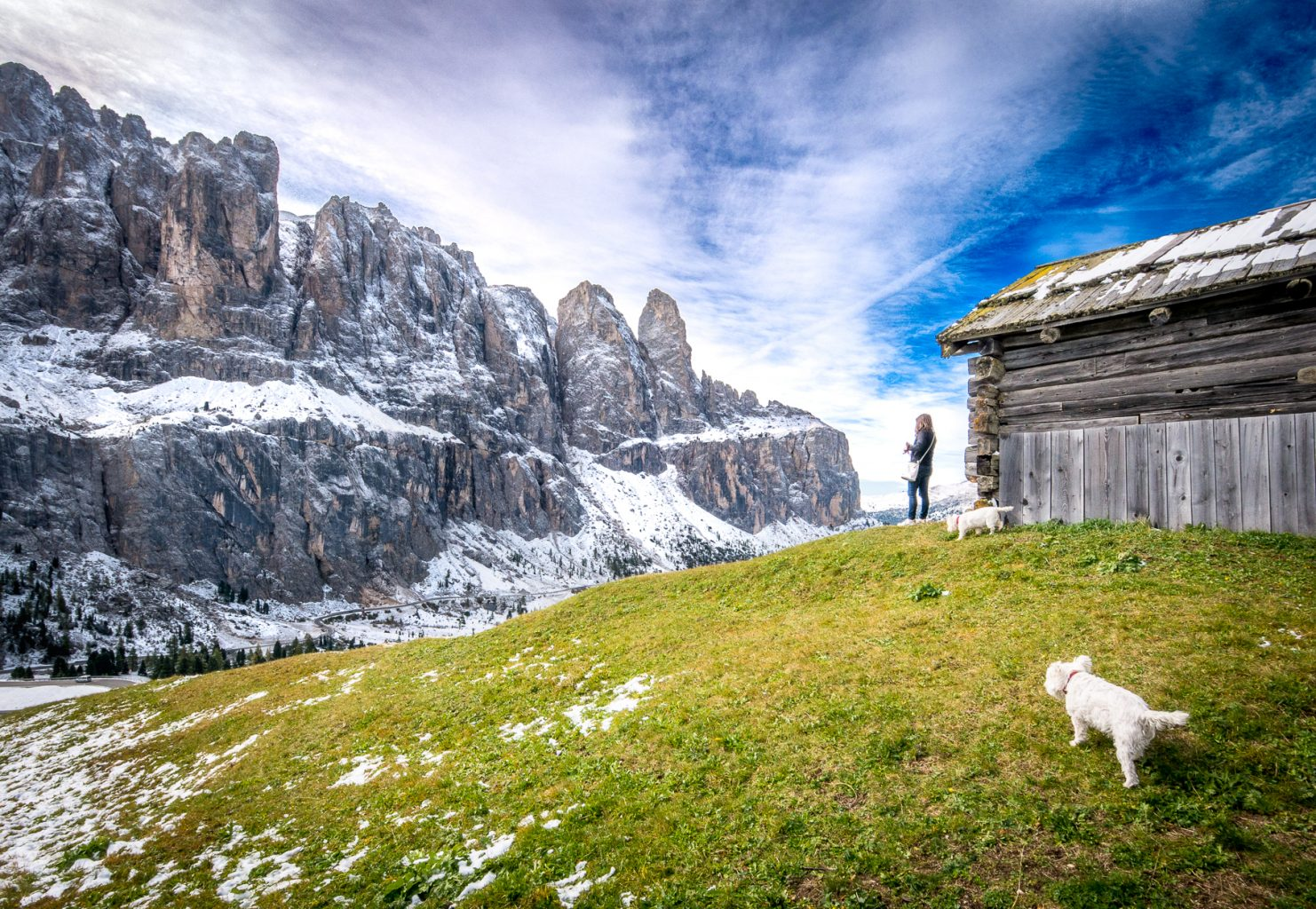 Gardena Pass - view with dog