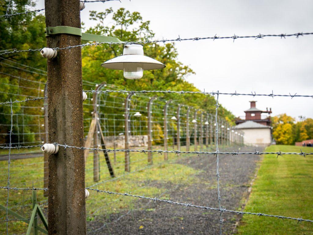 Buchenwald fence