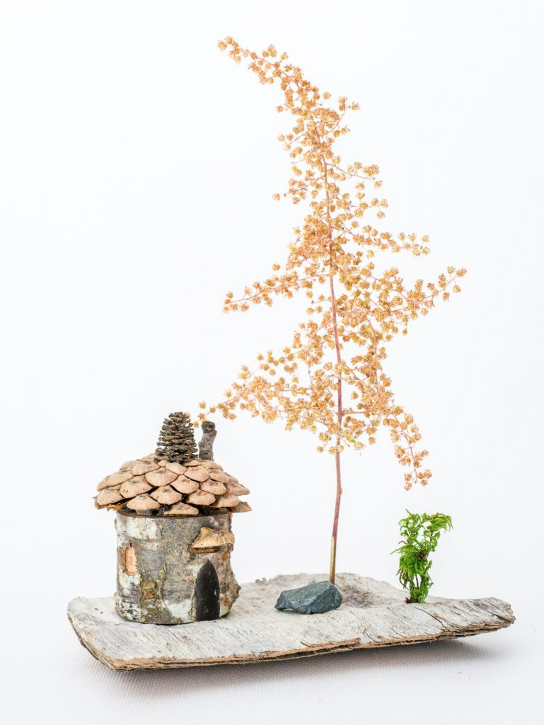 Branch house on driftwood
