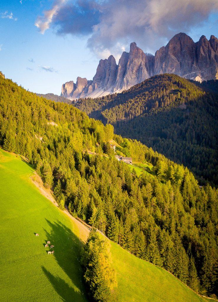 Hidden field, Italy